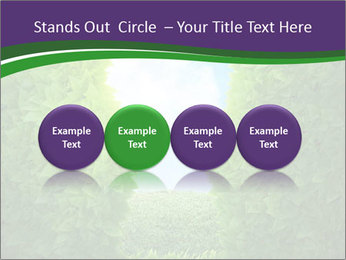 0000084562 PowerPoint Template - Slide 76