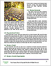 0000084562 Word Templates - Page 4