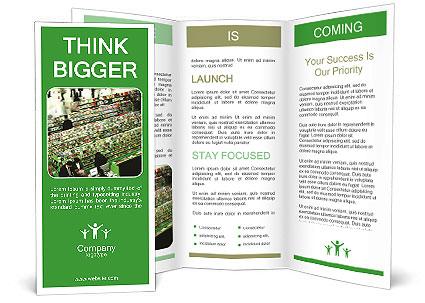 0000084564 Brochure Template