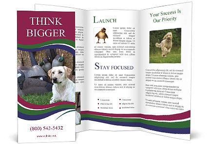 0000084566 Brochure Templates