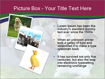 0000084566 PowerPoint Templates - Slide 17