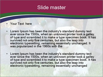 0000084566 PowerPoint Templates - Slide 2