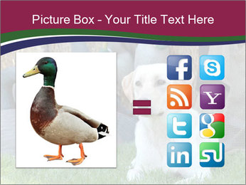 0000084566 PowerPoint Templates - Slide 21