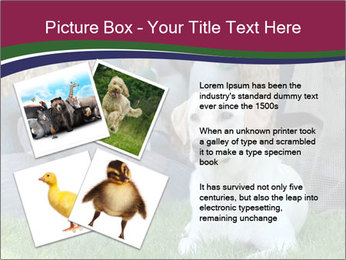 0000084566 PowerPoint Templates - Slide 23