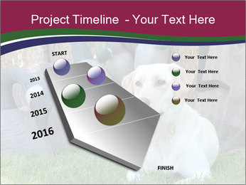 0000084566 PowerPoint Templates - Slide 26