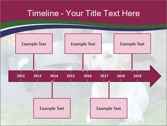 0000084566 PowerPoint Templates - Slide 28