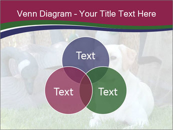 0000084566 PowerPoint Templates - Slide 33