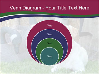 0000084566 PowerPoint Templates - Slide 34