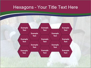0000084566 PowerPoint Templates - Slide 44