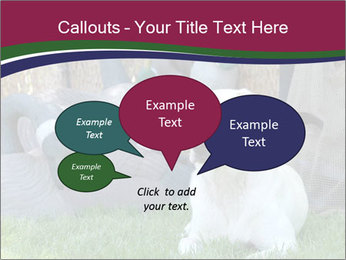 0000084566 PowerPoint Templates - Slide 73