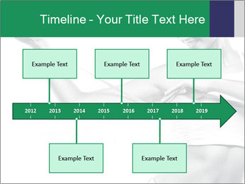 0000084567 PowerPoint Template - Slide 28