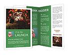 0000084576 Brochure Template