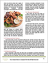 0000084580 Word Templates - Page 4