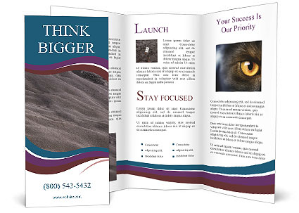 0000084585 Brochure Template