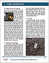 0000084585 Word Template - Page 3