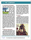0000084587 Word Templates - Page 3