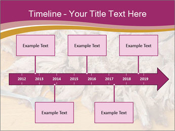 0000084598 PowerPoint Template - Slide 28