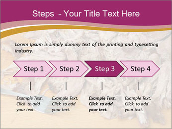 0000084598 PowerPoint Template - Slide 4