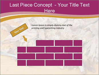 0000084598 PowerPoint Template - Slide 46