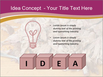 0000084598 PowerPoint Template - Slide 80