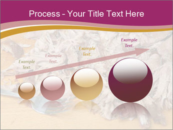 0000084598 PowerPoint Template - Slide 87