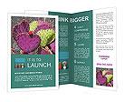 0000084599 Brochure Templates