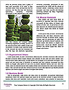 0000084599 Word Template - Page 4