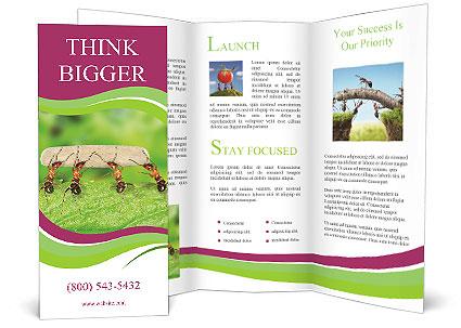 0000084603 Brochure Template