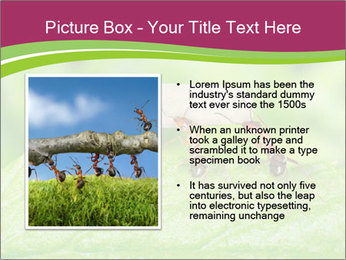 0000084603 PowerPoint Template - Slide 13