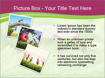 0000084603 PowerPoint Template - Slide 17
