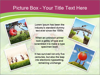 0000084603 PowerPoint Template - Slide 24