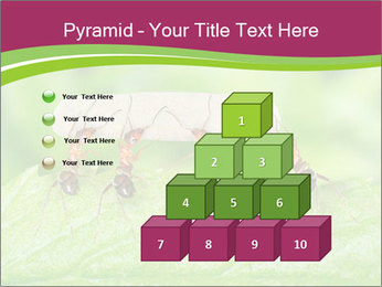 0000084603 PowerPoint Template - Slide 31