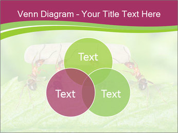 0000084603 PowerPoint Template - Slide 33