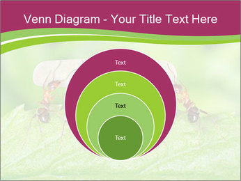 0000084603 PowerPoint Template - Slide 34