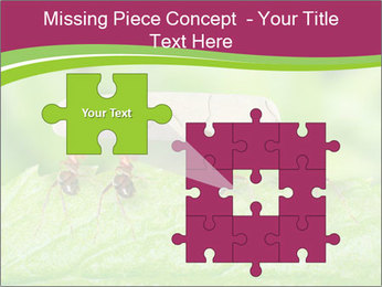 0000084603 PowerPoint Template - Slide 45
