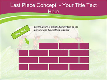 0000084603 PowerPoint Template - Slide 46