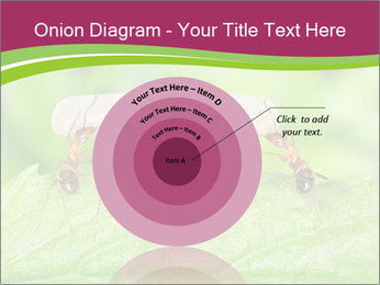 0000084603 PowerPoint Template - Slide 61