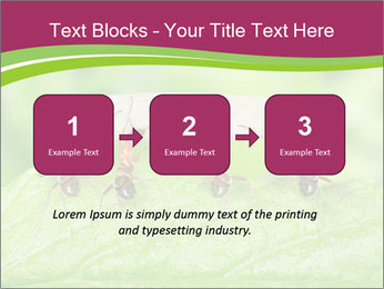 0000084603 PowerPoint Template - Slide 71