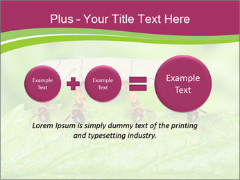 0000084603 PowerPoint Template - Slide 75