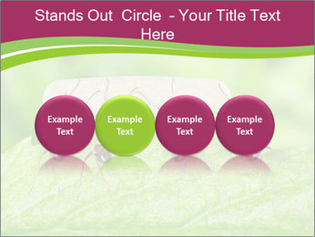 0000084603 PowerPoint Template - Slide 76