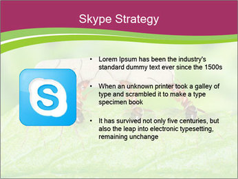0000084603 PowerPoint Template - Slide 8