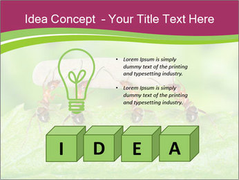 0000084603 PowerPoint Template - Slide 80