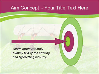 0000084603 PowerPoint Template - Slide 83