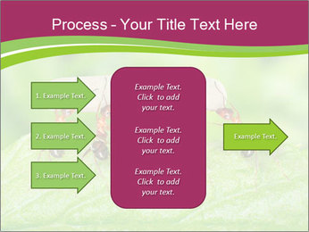0000084603 PowerPoint Template - Slide 85