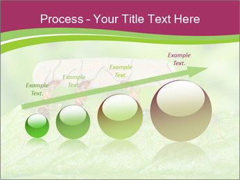 0000084603 PowerPoint Template - Slide 87