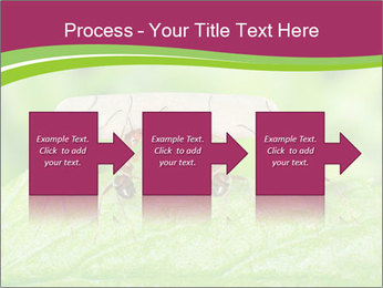 0000084603 PowerPoint Template - Slide 88