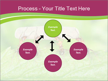 0000084603 PowerPoint Template - Slide 91