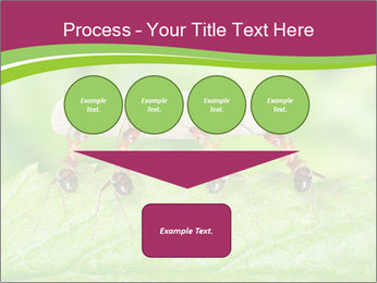 0000084603 PowerPoint Template - Slide 93