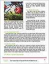 0000084603 Word Templates - Page 4