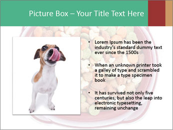0000084607 PowerPoint Template - Slide 13